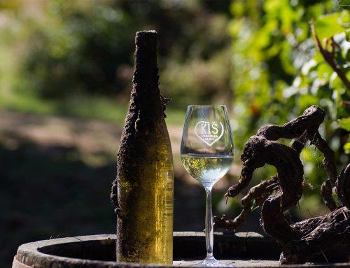Put rimskih careva i dunavska vina