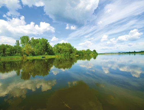 Dunav u Srbiji – 588  utisaka