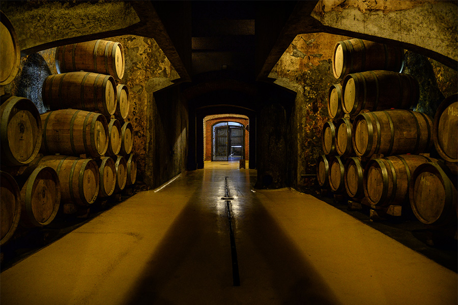 Kovačević Winery
