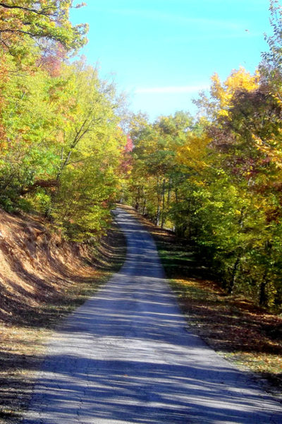 Ovčar trail